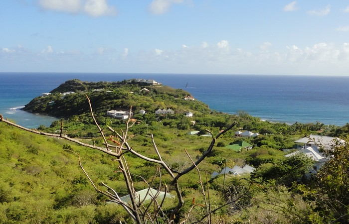 Turtle Bay Area View Lot